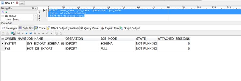datapump query check