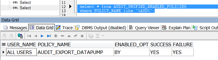 audit_policy_datapump.png